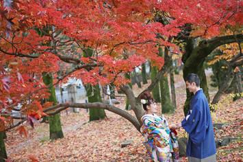 [大阪のカップル必見]京都で紅葉フォトウェディング